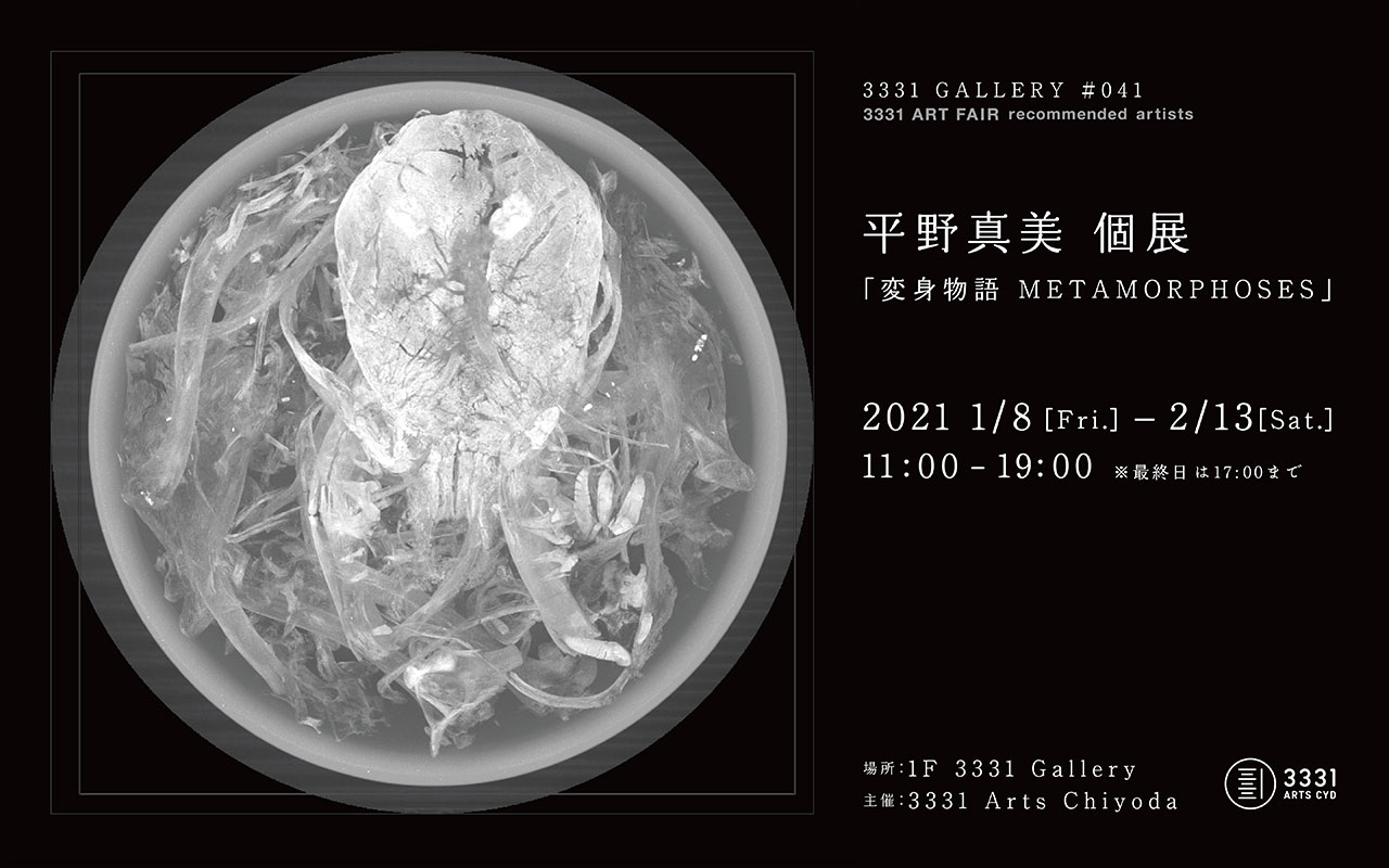 3331 GALLERY #041 3331 ART FAIR recommended artists 平野真美 個展「変身物語 METAMORPHOSES」