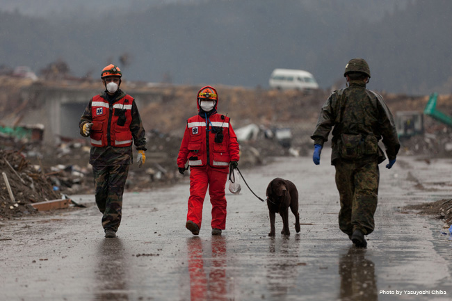 日本救助犬協会東日本大震災救助活動報告展 『今、伝えたいこと・・・』