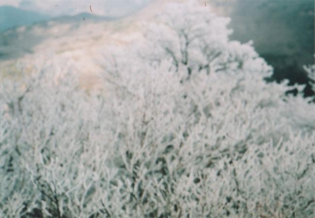アキバタマビ21 第14回展 『手に氷を持ち、歩き続ける』