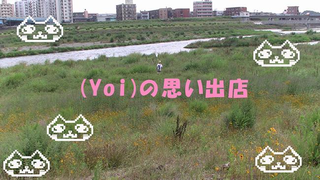 003938_17.jpg