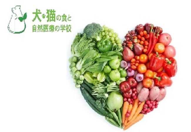 犬の食事療法入門編~ABC講座~