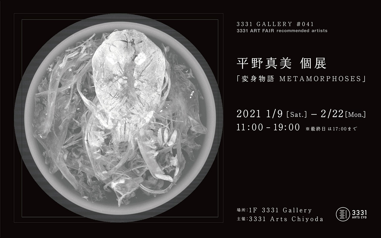 "3331 GALLERY #041 3331 ART FAIR recommended artists Mami Hirano Solo Exhibition ""METAMORPHOSES"""